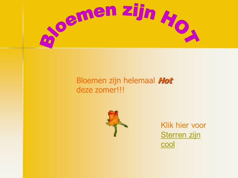 Bloemen zijn HOT Bloemen zijn helemaal Hot deze zomer!!!