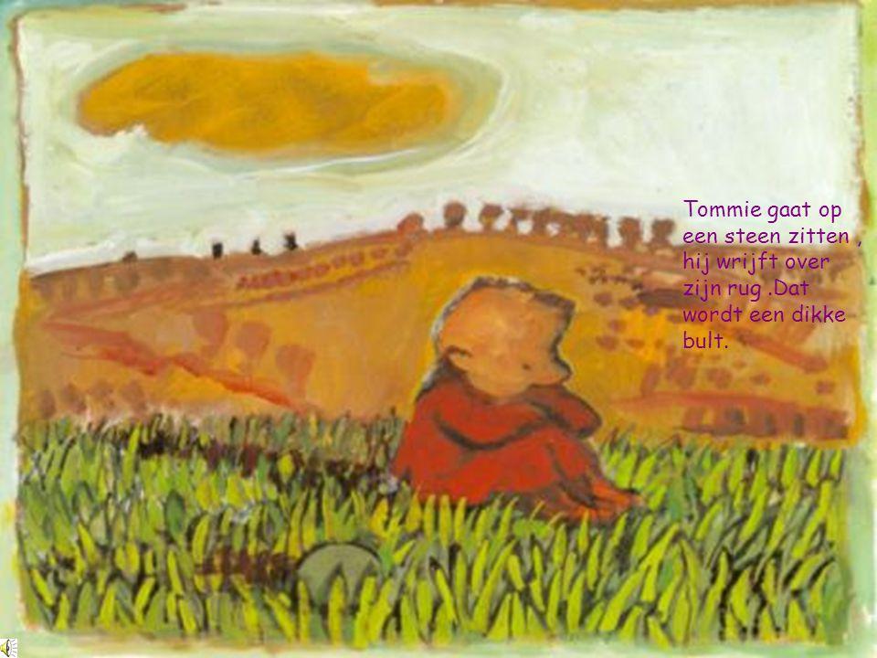 Tommie gaat op een steen zitten , hij wrijft over zijn rug