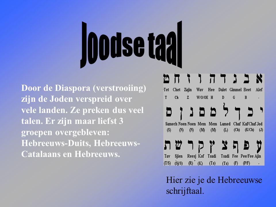 Joodse taal
