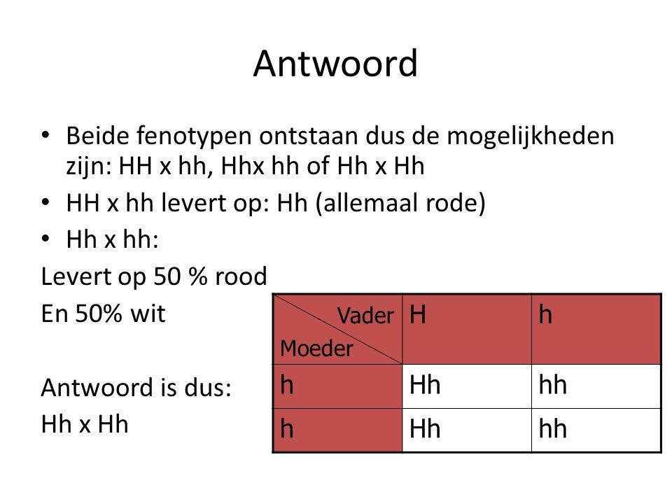 Antwoord Beide fenotypen ontstaan dus de mogelijkheden zijn: HH x hh, Hhx hh of Hh x Hh. HH x hh levert op: Hh (allemaal rode)