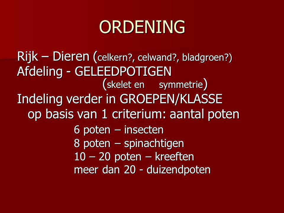 ORDENING Rijk – Dieren (celkern , celwand , bladgroen )