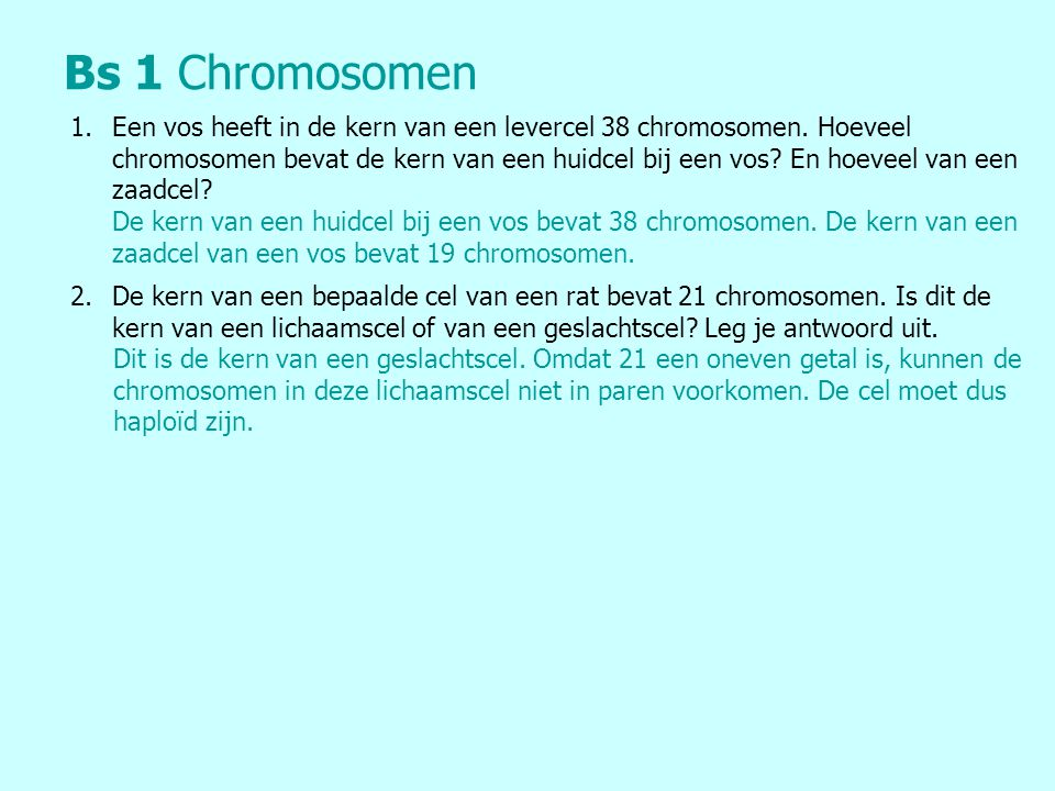 Bs 1 Chromosomen