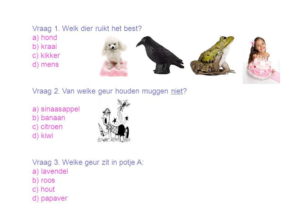 Vraag 1. Welk dier ruikt het best