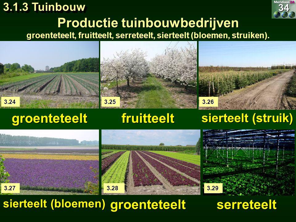 Productie tuinbouwbedrijven
