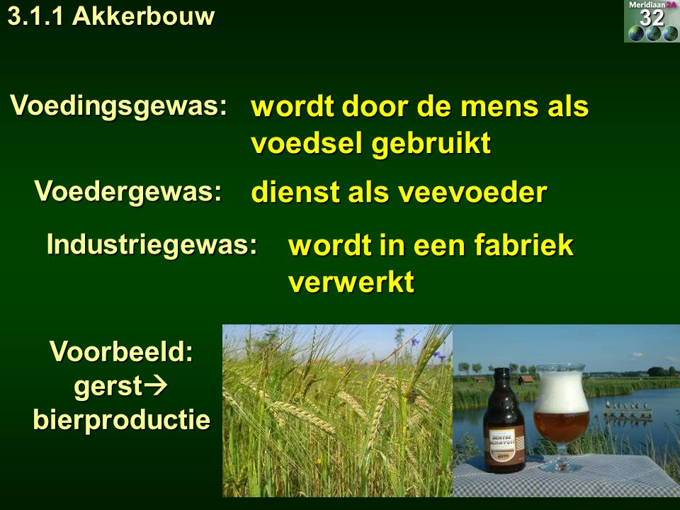 Voorbeeld: gerst bierproductie