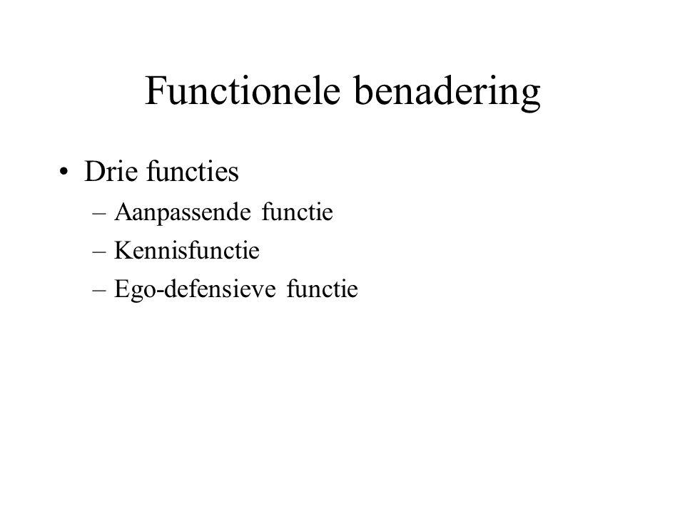 Functionele benadering