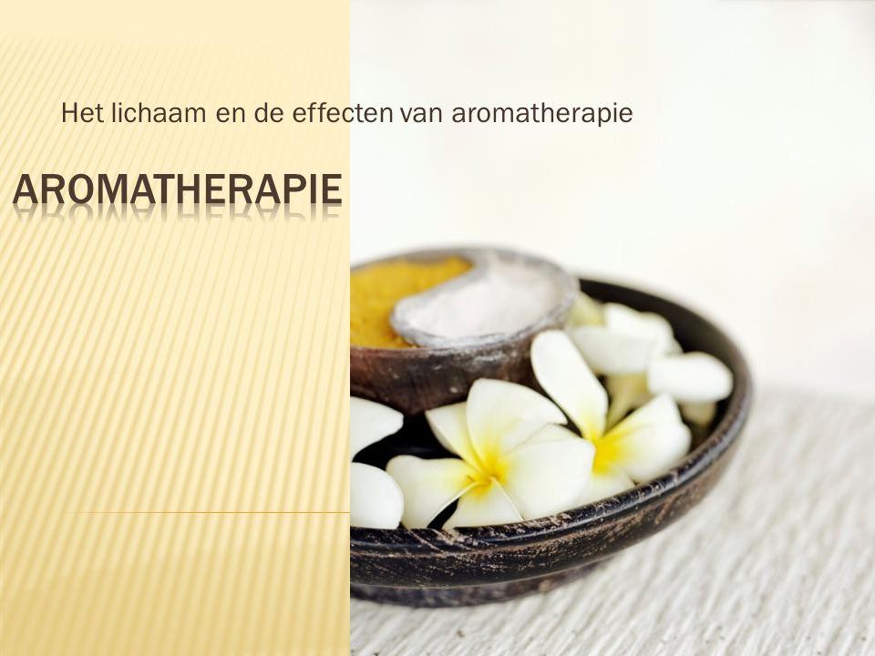 Het lichaam en de effecten van aromatherapie