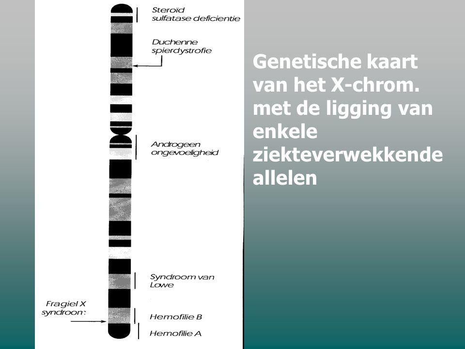 Genetische kaart van het X-chrom