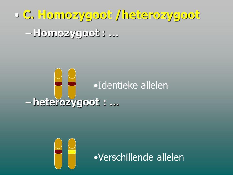 C. Homozygoot /heterozygoot