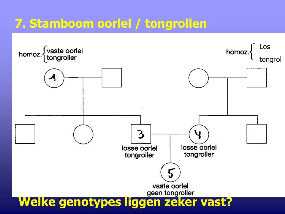 7. Stamboom oorlel / tongrollen