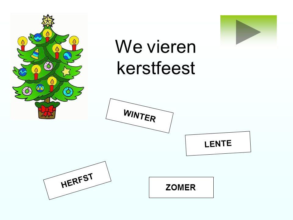 We vieren kerstfeest WINTER LENTE HERFST ZOMER