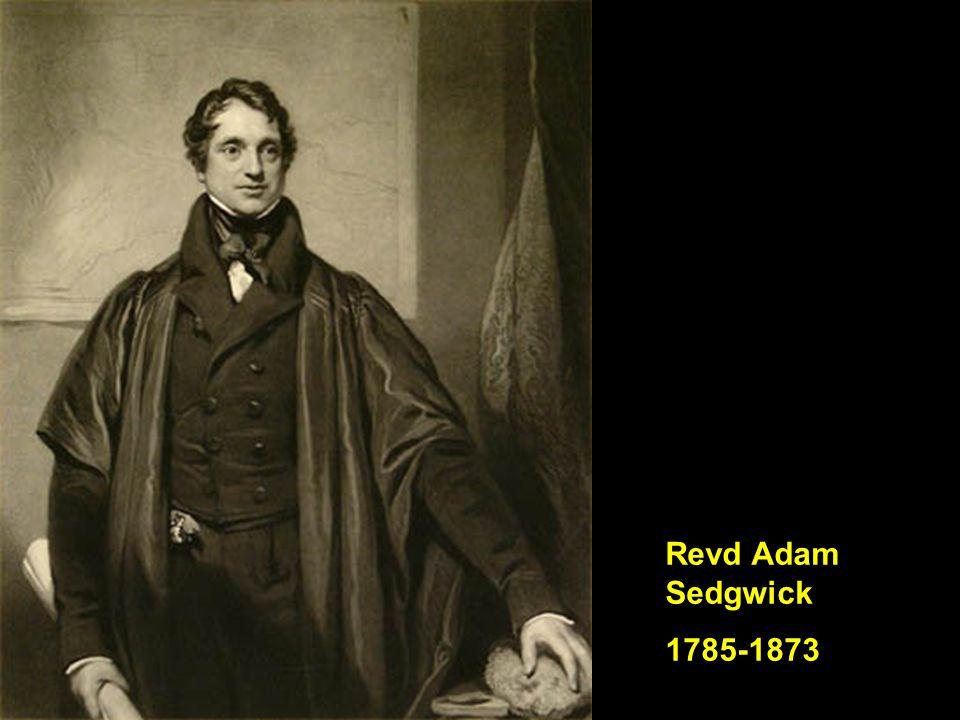 Revd Adam Sedgwick 1785-1873