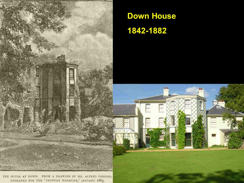 Down House 1842-1882