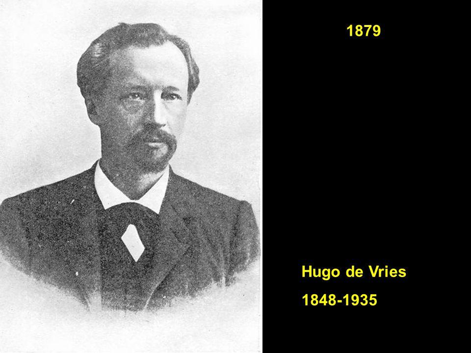 1879 Hugo de Vries 1848-1935