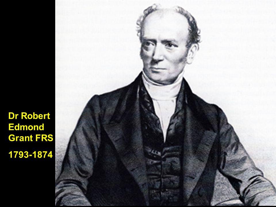 Dr Robert Edmond Grant FRS