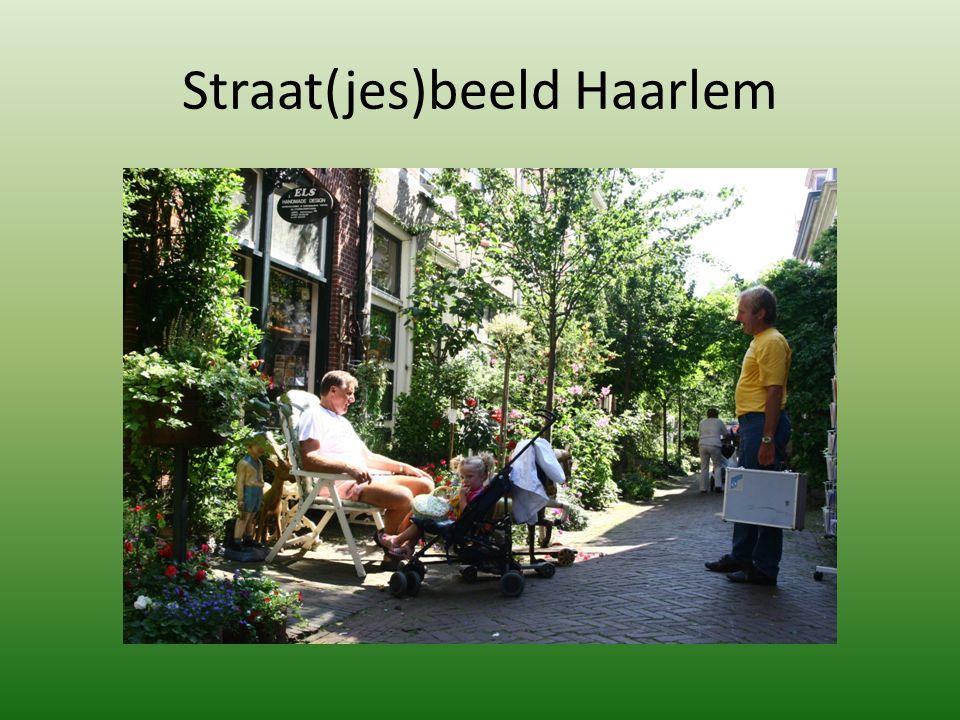 Straat(jes)beeld Haarlem