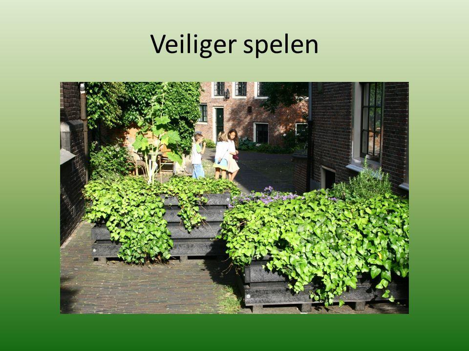 Veiliger spelen Goudsmitspleintje, Haarlem