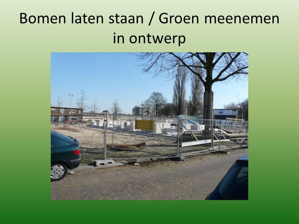 Bomen laten staan / Groen meenemen in ontwerp