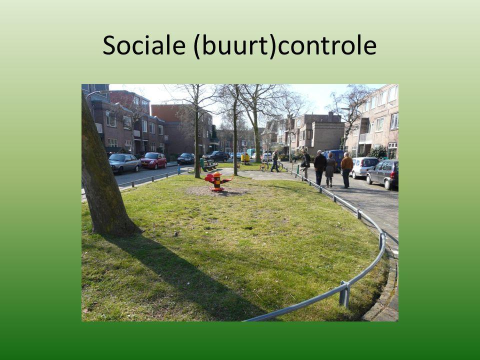 Sociale (buurt)controle
