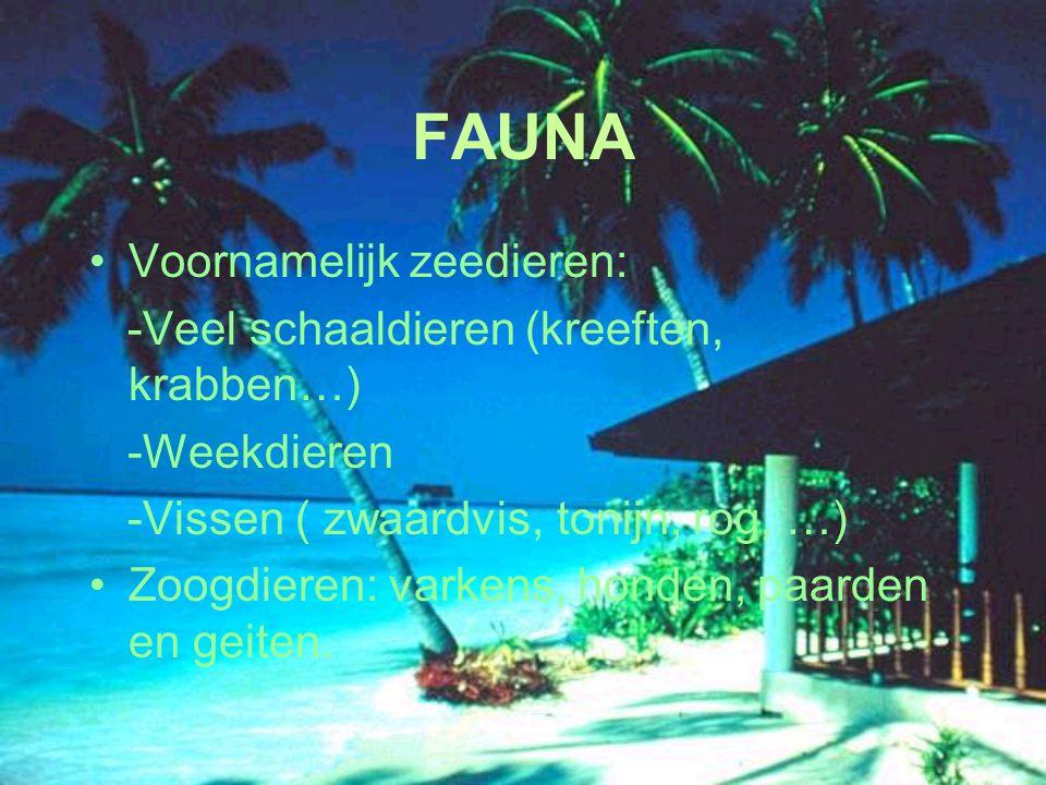 FAUNA Voornamelijk zeedieren: -Veel schaaldieren (kreeften, krabben…)