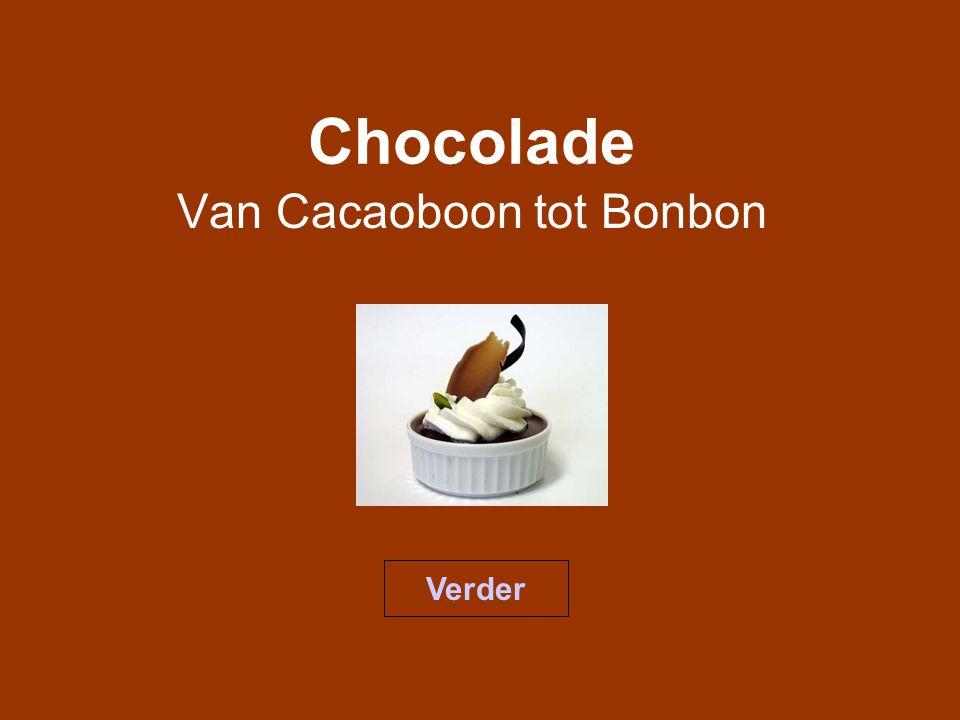 Van Cacaoboon tot Bonbon