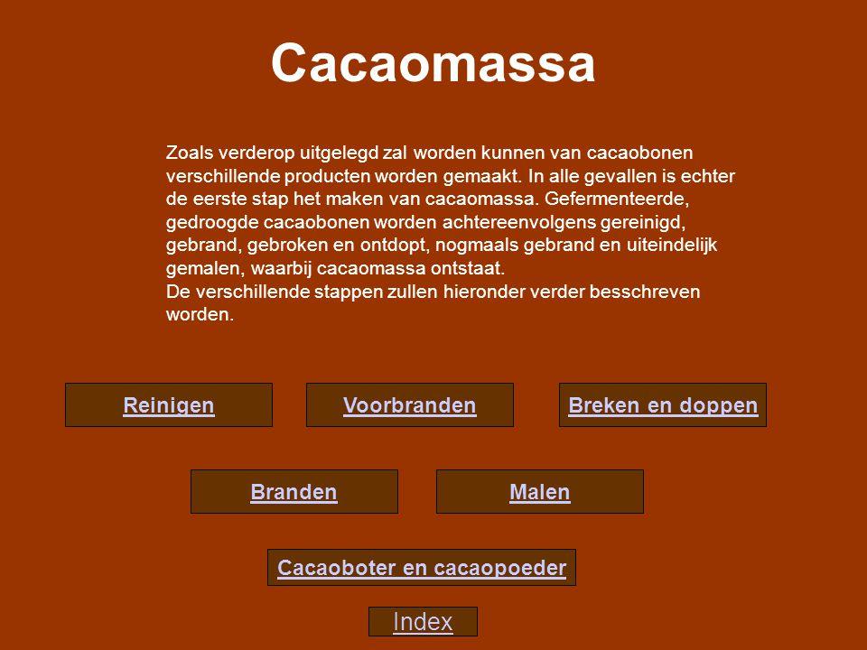 Cacaoboter en cacaopoeder