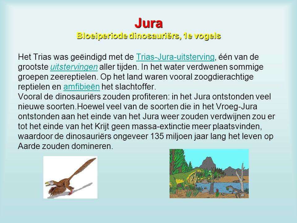 Jura Bloeiperiode dinosauriërs, 1e vogels