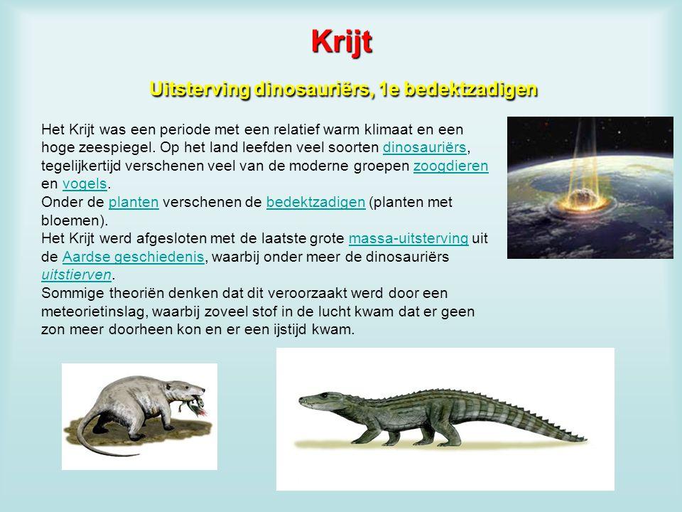 Krijt Uitsterving dinosauriërs, 1e bedektzadigen
