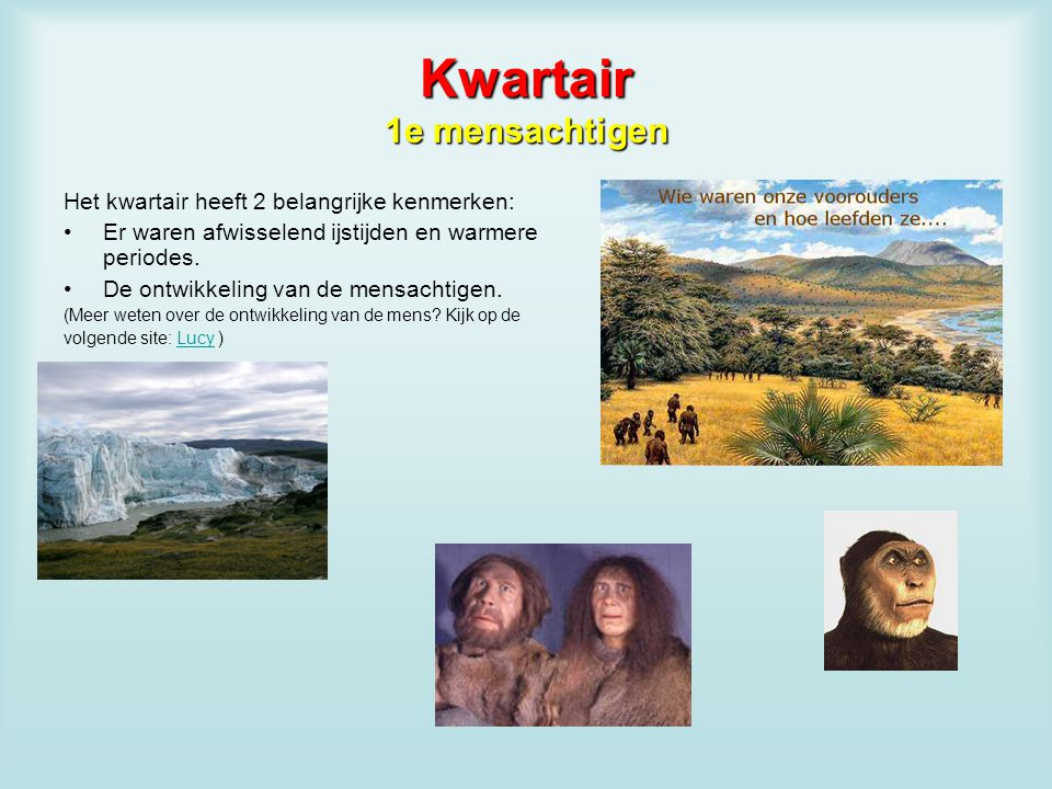 Kwartair 1e mensachtigen