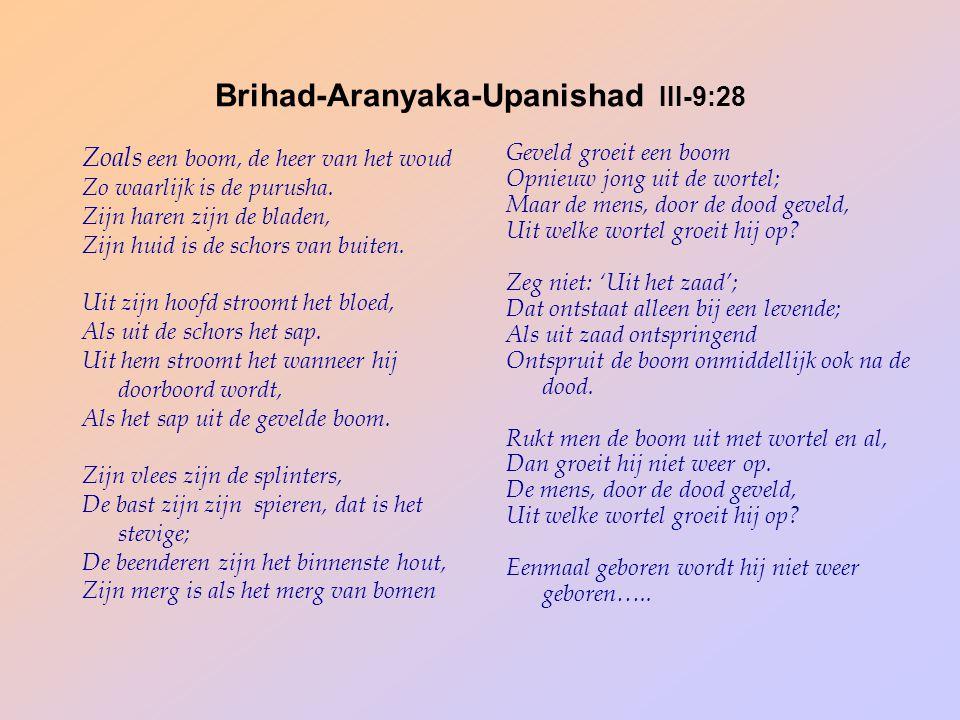 Brihad-Aranyaka-Upanishad III-9:28