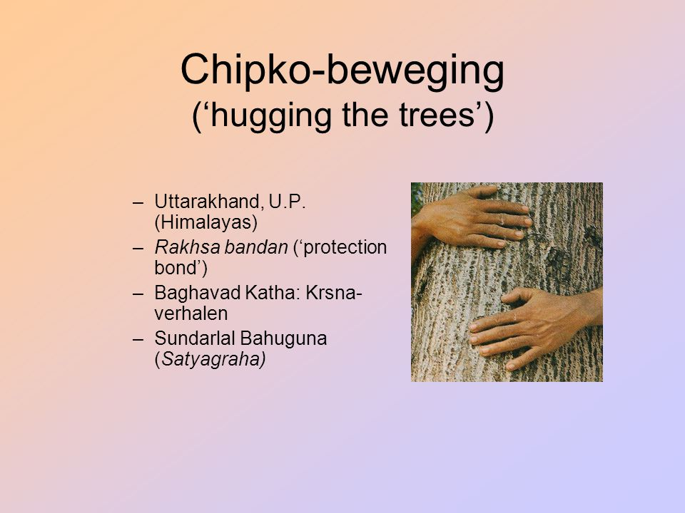Chipko-beweging ('hugging the trees')
