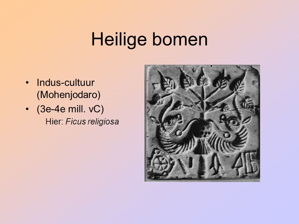 Heilige bomen Indus-cultuur (Mohenjodaro) (3e-4e mill. vC)