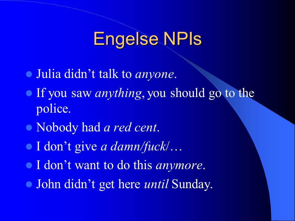 Engelse NPIs Julia didn't talk to anyone.
