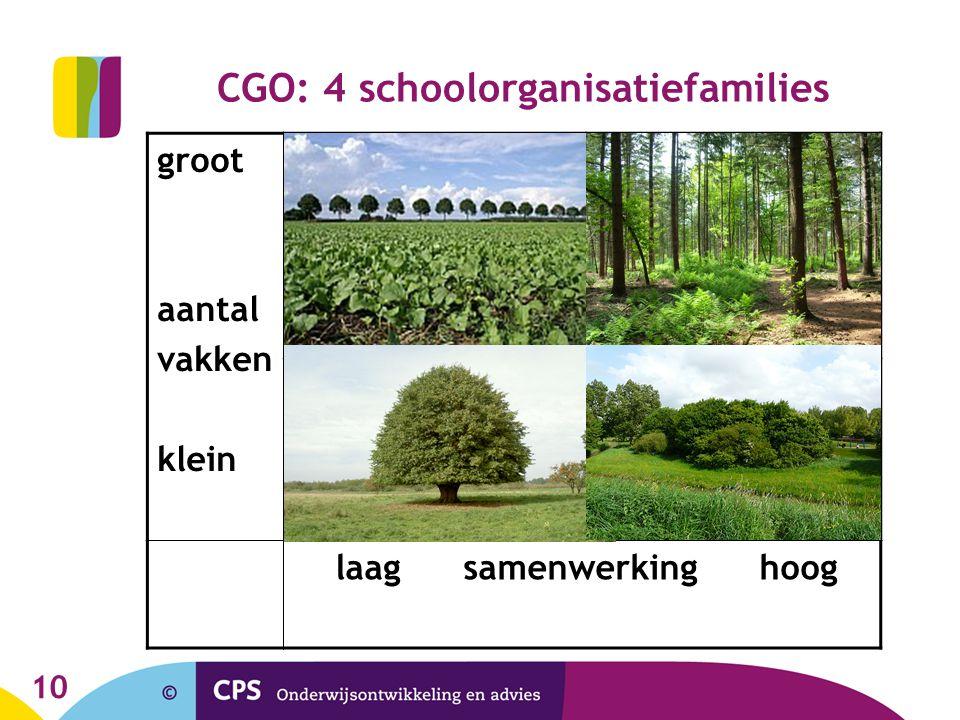 CGO: 4 schoolorganisatiefamilies