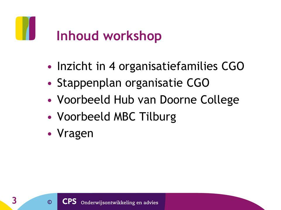 Inhoud workshop Inzicht in 4 organisatiefamilies CGO