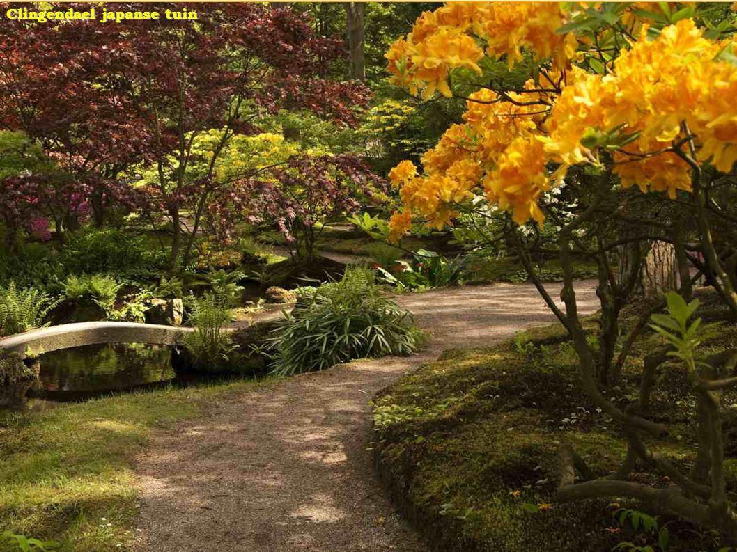 Clingendael japanse tuin