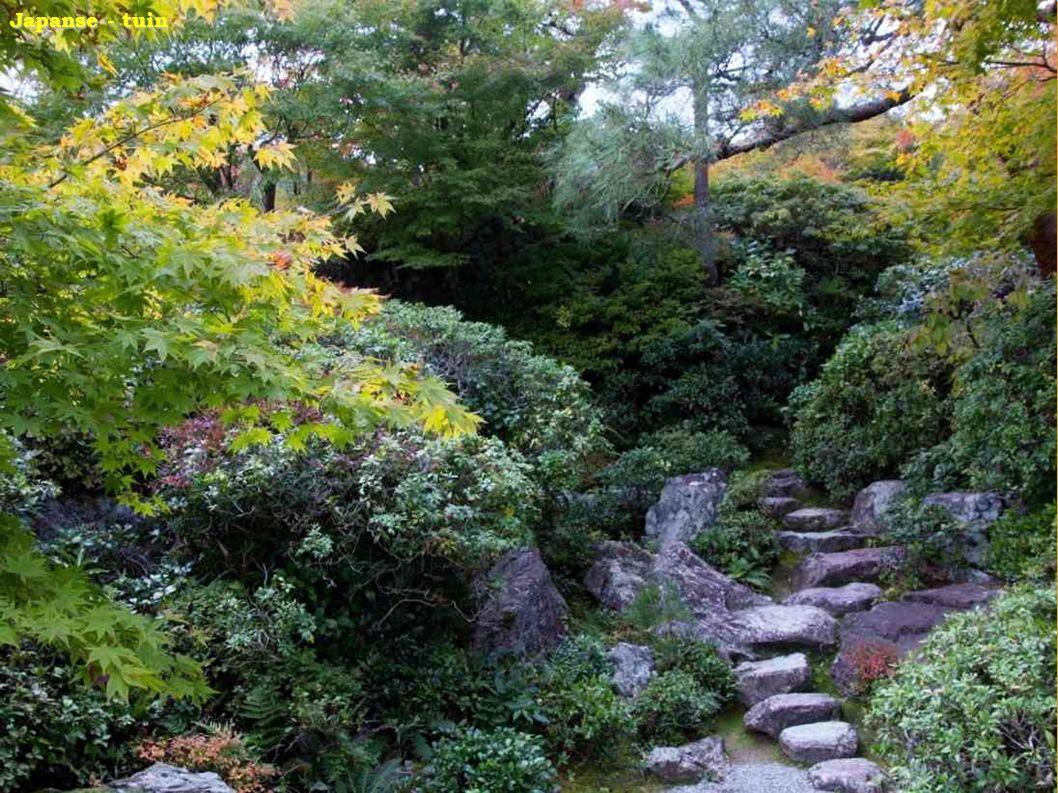 Japanse - tuin