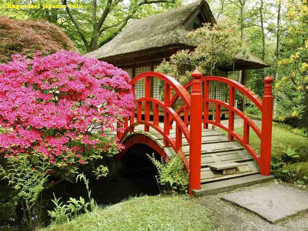 Clingendael japanse tuin.