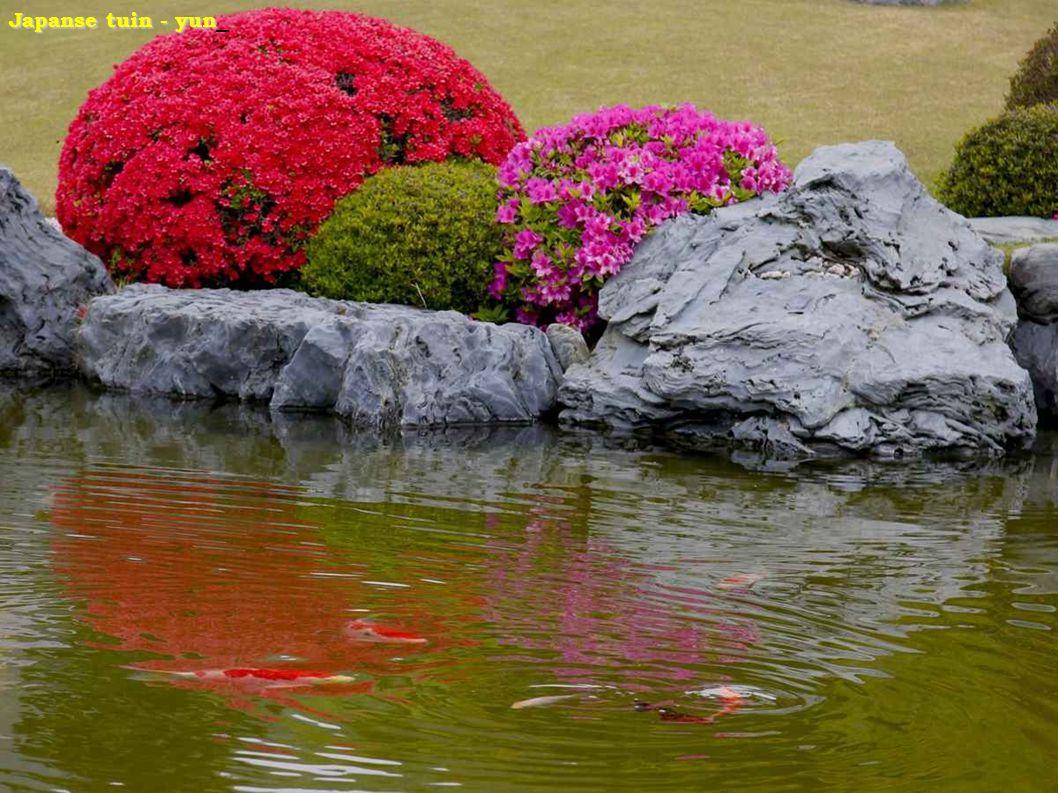 Japanse tuin - yun_