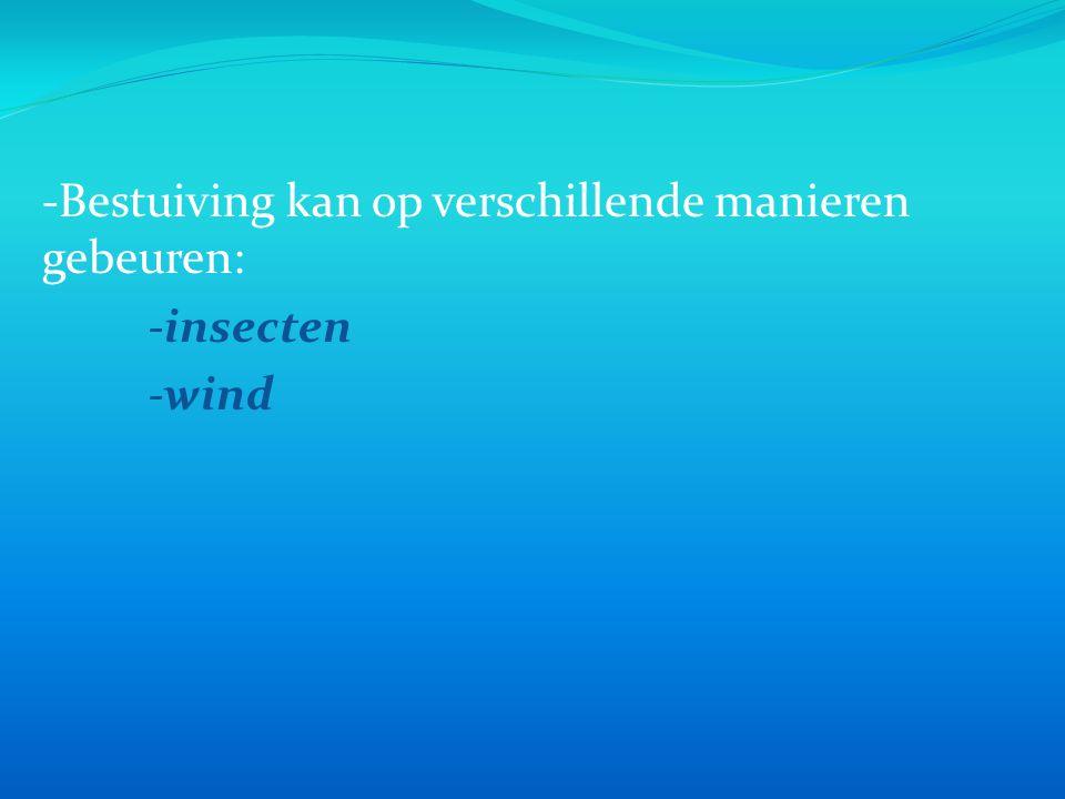 -Bestuiving kan op verschillende manieren gebeuren: -insecten -wind
