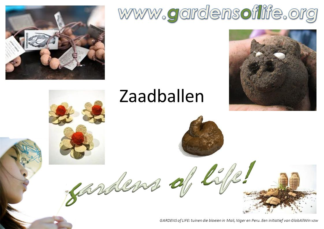 gardens of life! Zaadballen www.gardensoflife.org