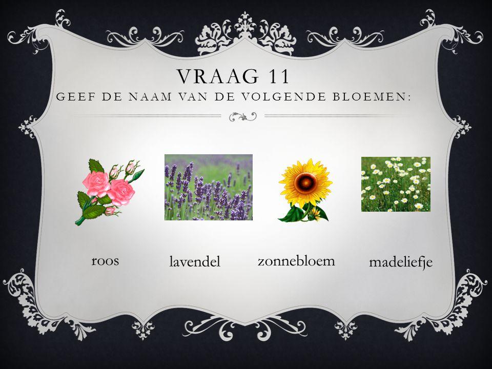 Vraag 11 geef de naam van de volgende bloemen:
