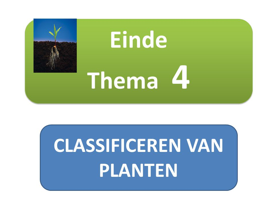CLASSIFICEREN VAN PLANTEN