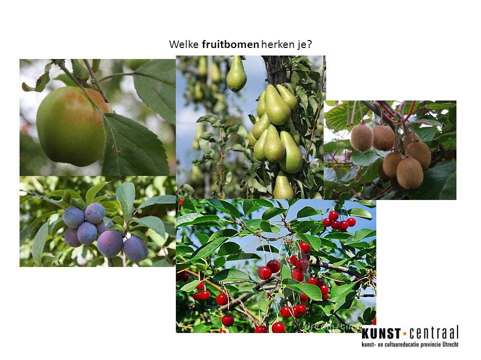 Welke fruitbomen herken je