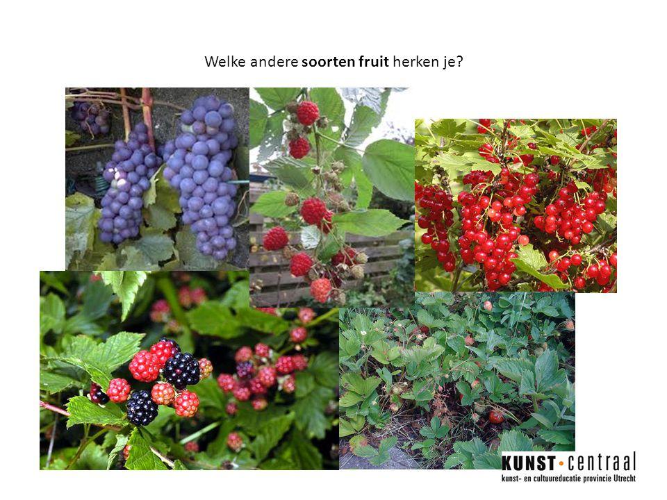 Welke andere soorten fruit herken je