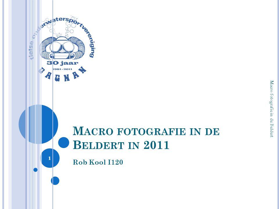 Macro fotografie in de Beldert in 2011