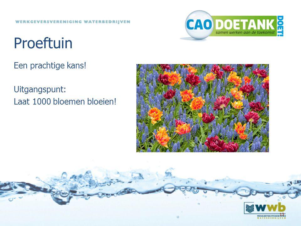 Proeftuin Een prachtige kans! Uitgangspunt: Laat 1000 bloemen bloeien!