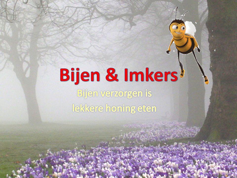 Bijen verzorgen is lekkere honing eten