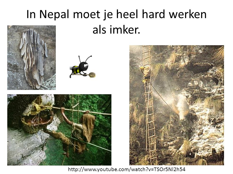 In Nepal moet je heel hard werken als imker.