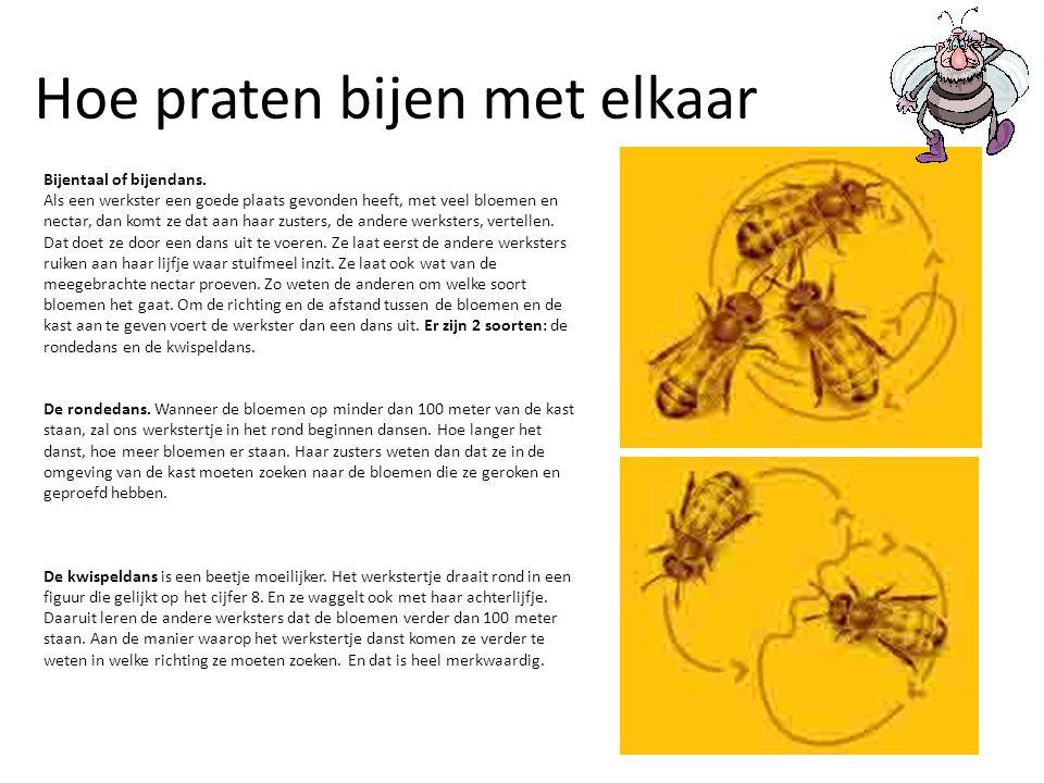 Hoe praten bijen met elkaar
